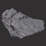 Concrete Debris (3)