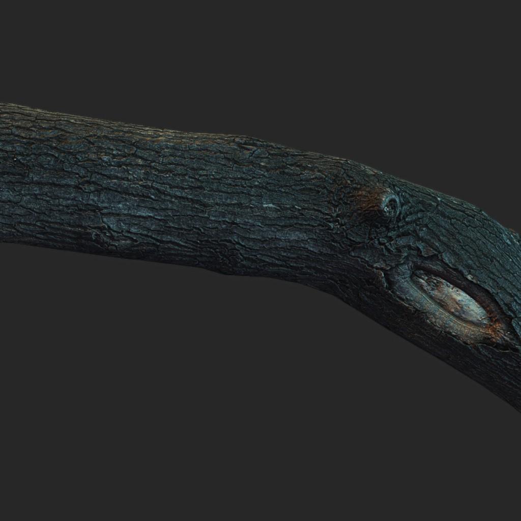 Wood_Log11