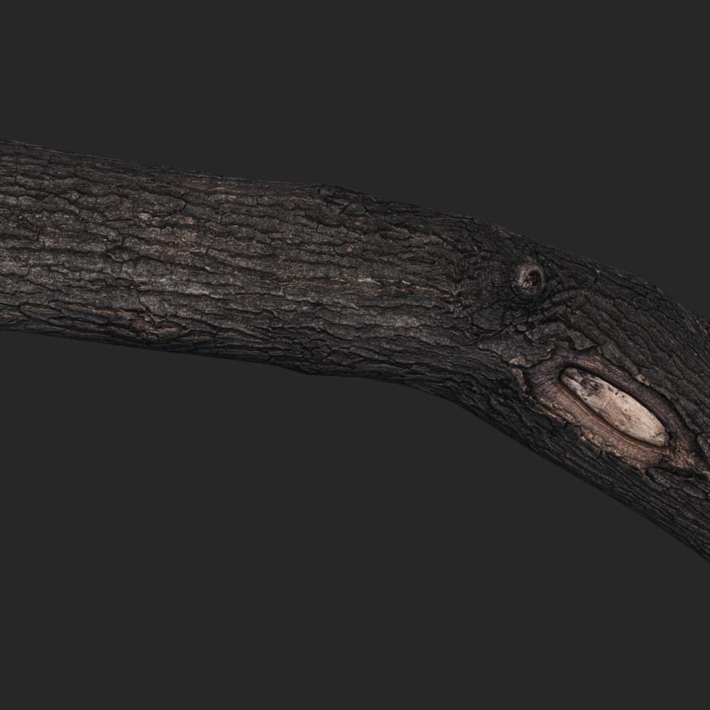 Wood_Log12