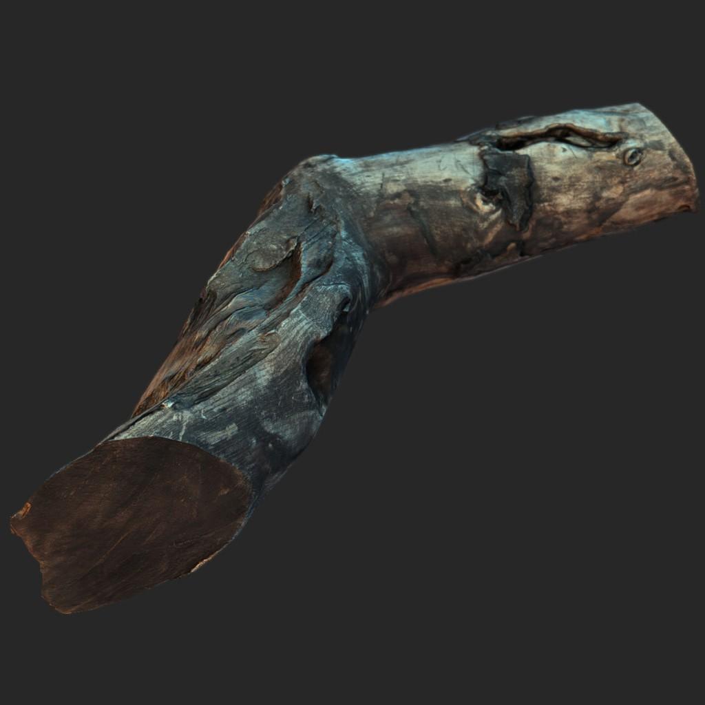 Wood_Log3