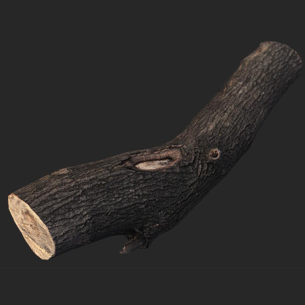 Wood_Log4