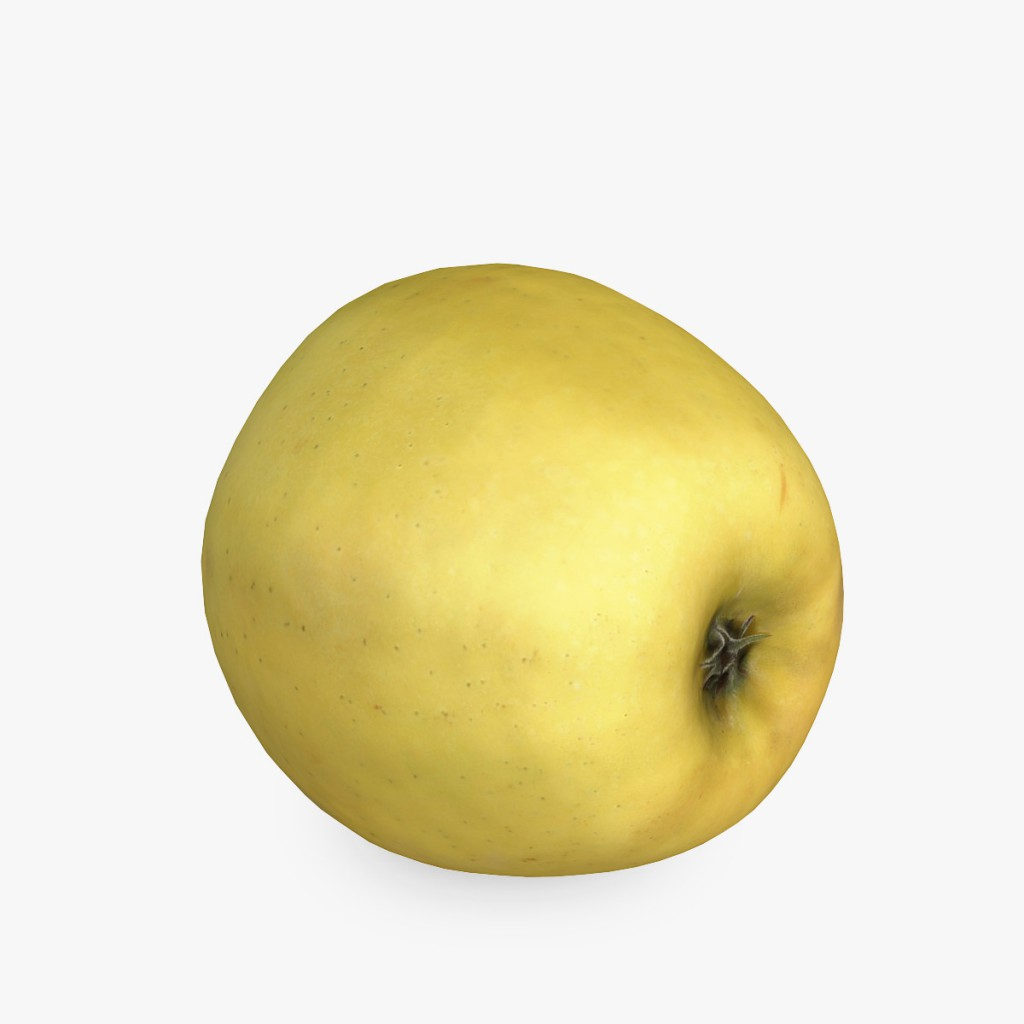 Yellow_Apple4
